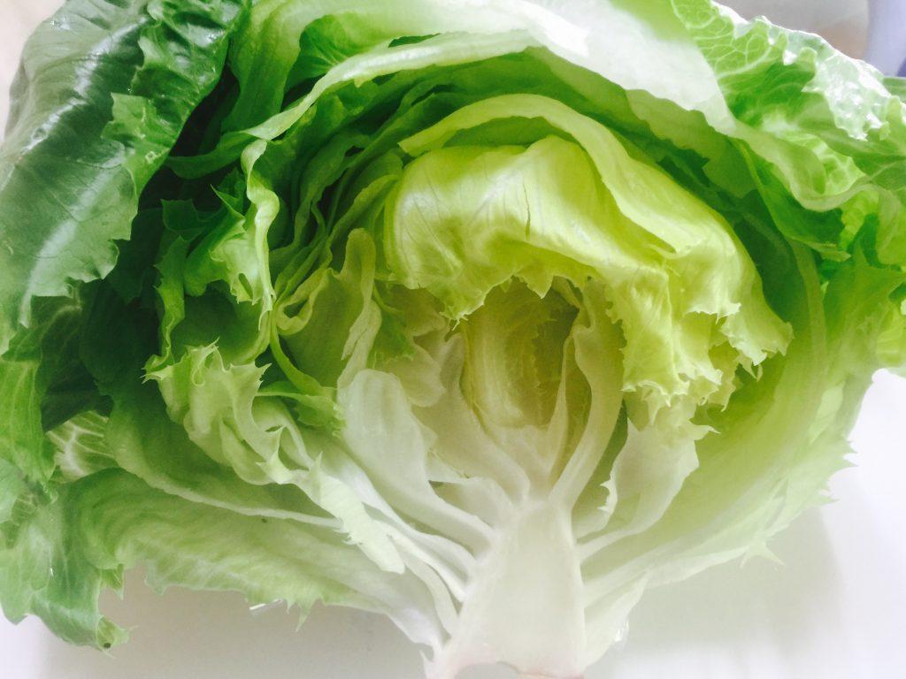 レタスの高騰で食卓からサラダが消えた日〜野菜生産者からみた高価格のわけと回避方法
