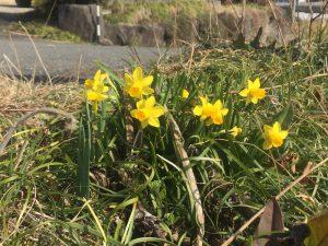 予期せぬ出来事は、偶然ではなく必然であること〜チャンスを生かす春の別れ
