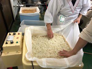 肝心要の麹作り〜これの出来でお味噌の旨味が決まります!【味噌作り二日目】